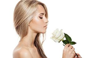 Bureaubladachtergronden Roos Blond meisje Model Kapsel Make up Witte achtergrond jonge vrouw