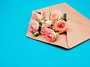 Bilder Rose Blumensträuße Farbigen hintergrund Briefumschlag