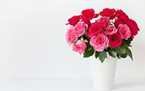 Hintergrundbilder Rosen Blumensträuße Vase Rosa Farbe Vorlage Grußkarte Blüte