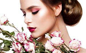Bureaubladachtergronden Rozen Bruin haar vrouw Model Make up Kapsels Witte achtergrond Jonge_vrouwen Bloemen