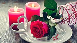 Fotos Rosen Kerzen Flamme Valentinstag Teller Herz Blumen