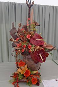Fotos Rose Gerbera Anthurium Design Blüte