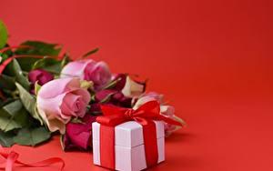Bilder Rosen Roter Hintergrund Schachtel Band Geschenke