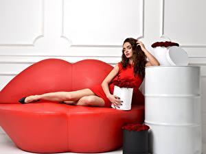 Fotos Rosen Couch Braune Haare Rot Sitzt Mädchens