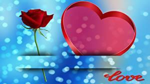 Papéis de parede Rosas Dia dos Namorados Coração Inglês Cartão do molde