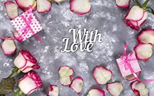 Fotos Rose Valentinstag Geschenke Englisches Text With Love Blumen