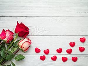 Hintergrundbilder Rosen Bretter Herz Vorlage Grußkarte Rot Blüte