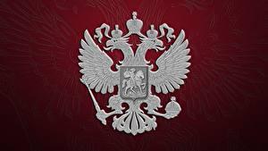 Fotos Russland Doppeladler Wappen Russische Roter Hintergrund