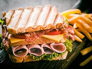 Bilder Sandwich Brot Fleischwaren Gemüse Speck Lebensmittel