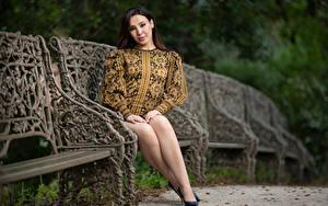 Bilder Bank (Möbel) Sitzend Bein Kleid Starren Unscharfer Hintergrund Sarah junge Frauen