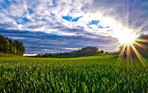 Bilder Landschaftsfotografie Felder Wolke Lichtstrahl Sonne Natur