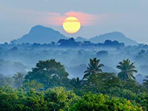 Bilder Landschaftsfotografie Gebirge Wälder Sonnenaufgänge und Sonnenuntergänge Himmel Sonne