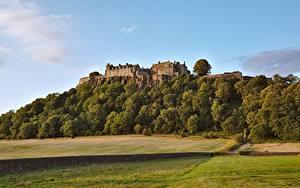 Fotos Schottland Wälder Burg Landschaftsfotografie Gras Sterling castle