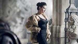 Bilder Skulpturen Brünette Posiert Kleid Pelzmantel junge Frauen