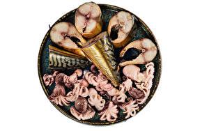 Fotos Meeresfrüchte Fische - Lebensmittel Kraken Weißer hintergrund Lebensmittel