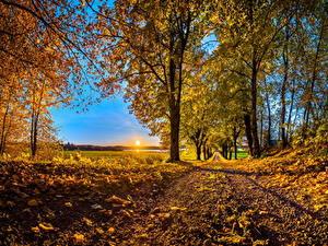 Bilder Jahreszeiten Herbst Wege Bäume Blattwerk Sonne