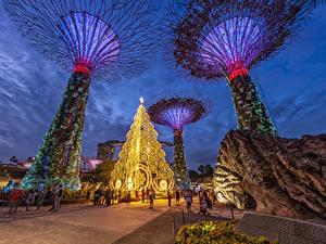 Fotos Singapur Abend Parks Design Gardens by The Bay Natur