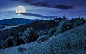 Fotos Himmel Gebirge Wälder Nacht Mond Gras