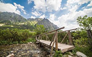 Bilder Slowakei Berg Flusse Brücken Hölzern Tatras Mountains