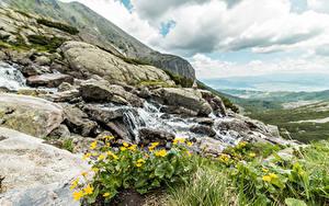 Bilder Slowakei Steine Gras Bäche Tatra mountains Natur