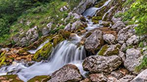 Fotos Slowenien Wälder Steine Wasserfall Bäume Bach  Natur