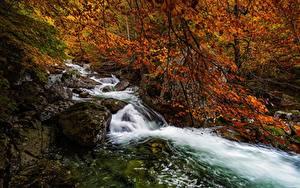 Hintergrundbilder Spanien Wälder Herbst Flusse Steine Bäume Aragon, Salenques River, Posets-Maladeta Natural Park Natur