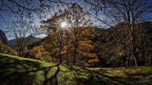 Bilder Spanien Gebirge Herbst Bäume Sonne Asturias