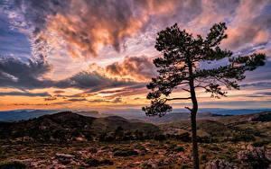 Bilder Spanien Berg Abend Sonnenaufgänge und Sonnenuntergänge Himmel Wolke Bäume Catalonia