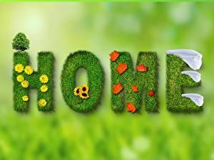 Hintergrundbilder Frühling Unscharfer Hintergrund Wort Englische Blatt HOME