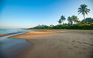 Hintergrundbilder Sri Lanka Küste Meer Palmen Strand Bentota Beach Natur