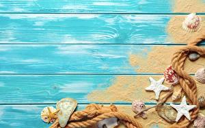 Fotos Seesterne Muscheln Sommer Bretter Sand Vorlage Grußkarte Seil