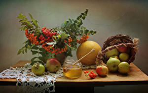 Bilder Stillleben Äpfel Eberesche Melone Honig Weidenkorb Ast Weckglas Lebensmittel