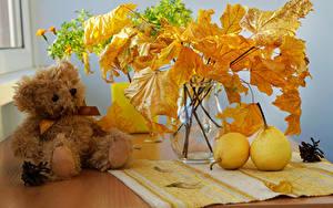 Bilder Stillleben Herbst Birnen Teddybär Vase Blattwerk Ast Natur