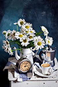 Hintergrundbilder Stillleben Kamillen Kaffee Uhr Krüge Tasse Blüte