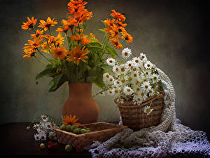 Photo Still-life Camomiles Gazania Gooseberry Vase Wicker basket Flowers
