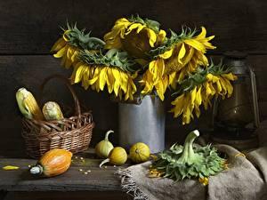 Bilder Stillleben Mais Sonnenblumen Weidenkorb Blumen