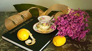 Bilder Stillleben Zitrone Tasse Bücher