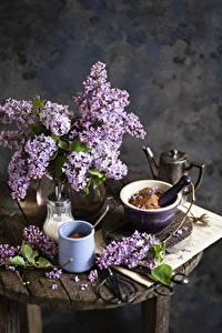 Hintergrundbilder Stillleben Flieder Ast Becher Blüte