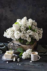 Bilder Stillleben Syringa Kaffee Cappuccino Bretter Weiß Tasse Blüte Lebensmittel