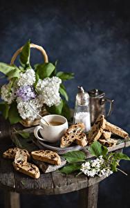 Fotos Stillleben Flieder Kaffee Backware Ast Tasse Lebensmittel Blumen
