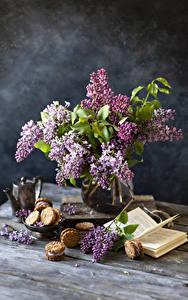 Bilder Stillleben Syringa Kekse Bücher Ast Blumen Lebensmittel