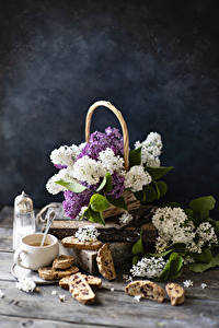 Fotos Stillleben Syringa Backware Kaffee Bretter Ast Tasse Blüte Lebensmittel