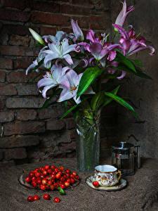 Bilder Stillleben Lilien Kirsche Wände Vase Tasse Blumen Lebensmittel