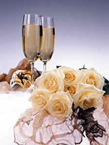 Fotos Stillleben Rose Champagner Weinglas 2 Blumen