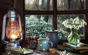 Fotos Stillleben Schneeglöckchen Petroleumlampe Flötenkessel Vase Becher Zucker Löffel Bücher Fenster das Essen Blumen