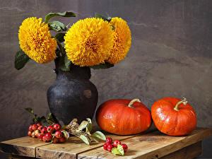 Bilder Stillleben Tagetes Kürbisse Äpfel Vase Ast Blumen Lebensmittel