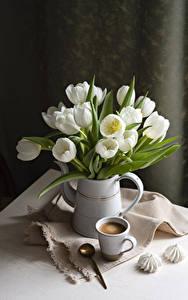Fotos Stillleben Tulpen Kaffee Zefir Vase Tasse Weiß Löffel Blumen
