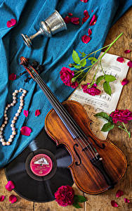 Pictures Still-life Violin Notes Roses Jewelry Petals Stemware Flowers