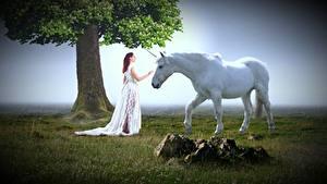Fotos Steine Einhorn Gras Bäume Kleid Weiß Fantasy Mädchens