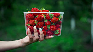 Image Strawberry Blurred background Box Hands Food